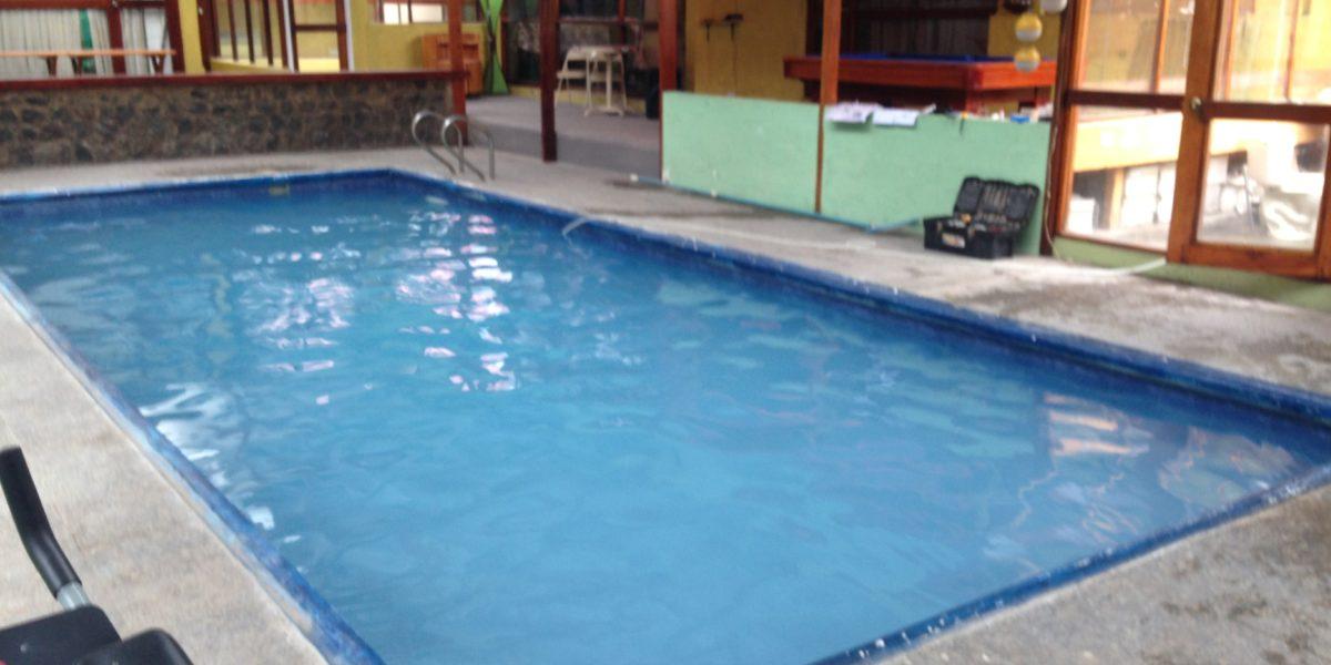Mantener a tus hijos y mascotas seguros en la piscina